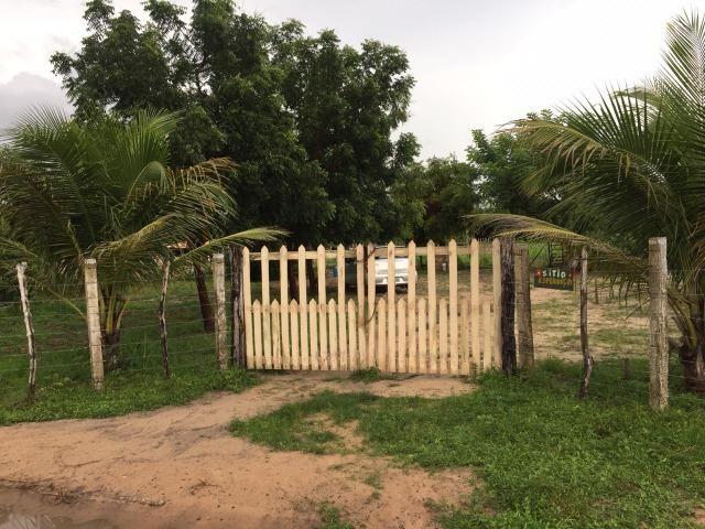 Sítio de 60Hectares a 13Km da Cidade do Buriti dos Lopes. (140mil) - Foto 2