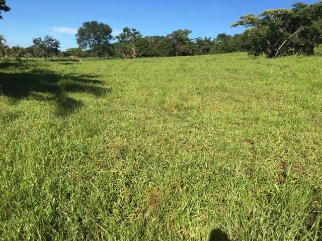 Fazenda a 4 km da BR 364 antes da Serra de São Vicente Prox do posto chapadão - Foto 12
