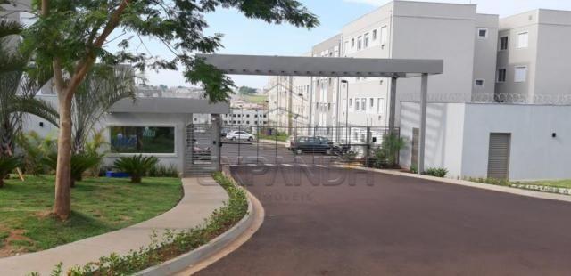 Apartamento para alugar com 2 dormitórios em Jardim veneto ii, Sertaozinho cod:L4376
