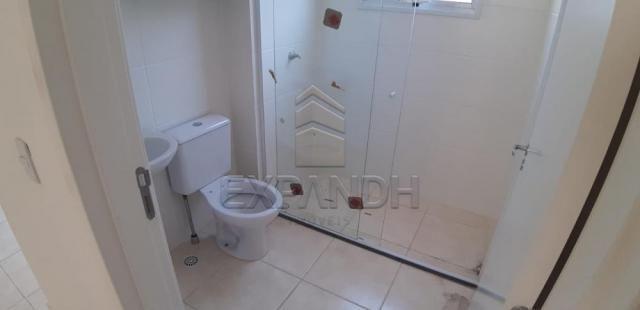 Apartamento para alugar com 2 dormitórios em Jardim veneto ii, Sertaozinho cod:L4376 - Foto 16