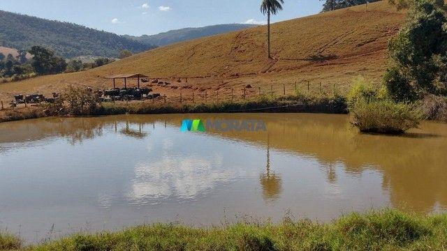 FAZENDA À VENDA - 75 HECTARES - ONÇA DE PITANGUI (MG)