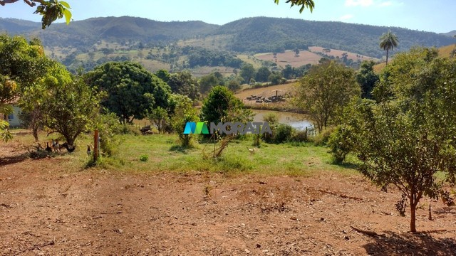 FAZENDA À VENDA - 75 HECTARES - ONÇA DE PITANGUI (MG) - Foto 13
