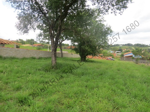 REF 613 Terreno 1000 m², escritura ok, internet fibra, Imobiliária Paletó - Foto 7