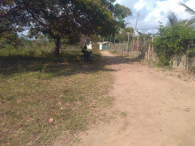 Vendo terreno em Itamaracá  - Foto 2