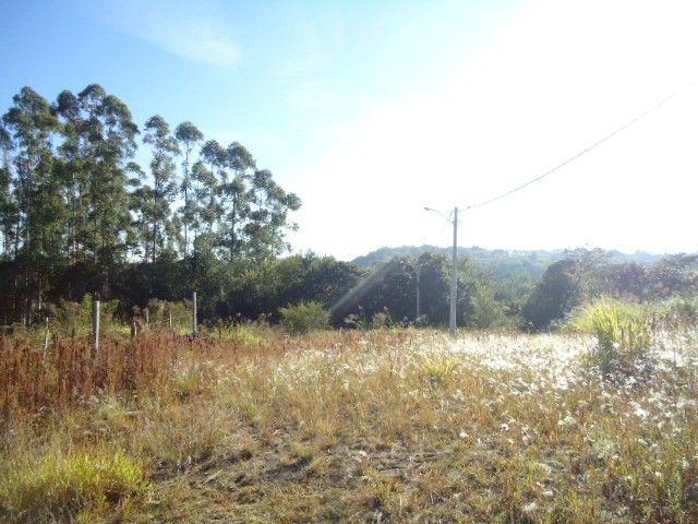 (T2488) Terreno no Bairro Haller, Santo Ângelo, RS - Foto 6