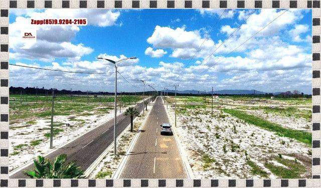 Lotes Terras Horizonte - &%&% - Foto 12
