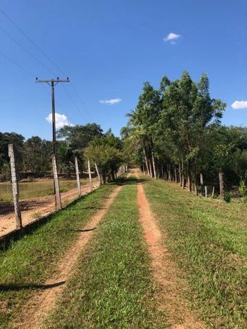 Chacara em Sto Antonio Leverger 110metros de Beira de Rio C/Tanque de Peixes Arvores Fruti - Foto 4