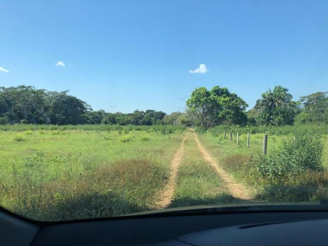 Chacara em Sto Antonio Leverger 110metros de Beira de Rio C/Tanque de Peixes Arvores Fruti - Foto 3