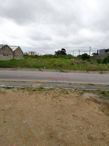 Terreno residencial à venda, afonso pena, são josé dos pinhais.