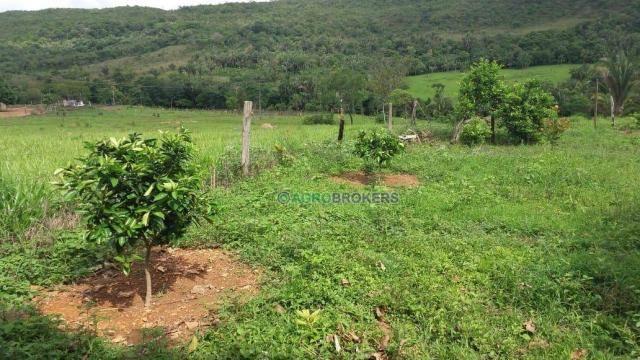 Sítio 19,5 ha em serra de são vicente - Foto 4