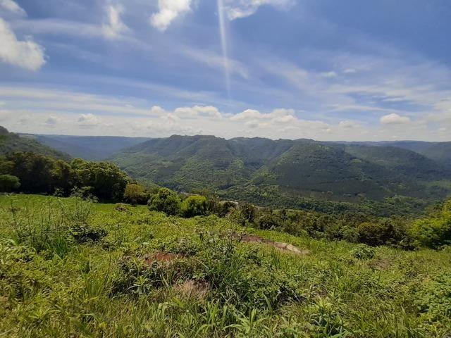 Excelente Chácara próximo a Flores da Cunha - Foto 8