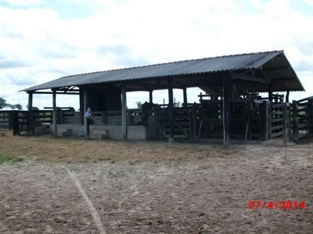 Fazenda 4400 hectares divisa com Goiás, a 500 km de Cuiabá e 500 km de Goiânia! PECUÁRIA! - Foto 13