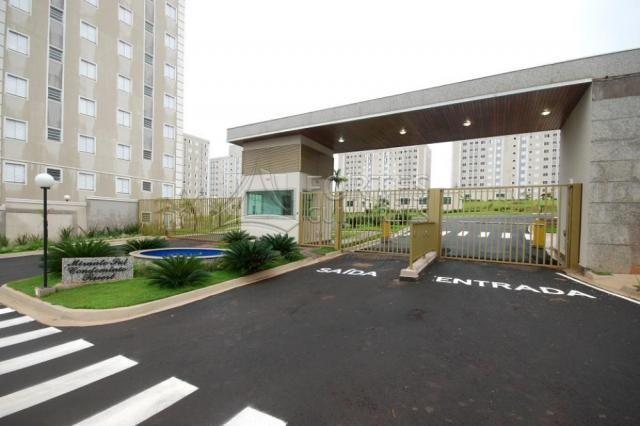 Apartamento para alugar com 2 dormitórios cod:L21853 - Foto 19