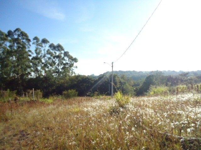 (T2488) Terreno no Bairro Haller, Santo Ângelo, RS - Foto 5