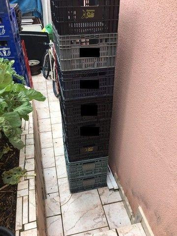 Caixas para verdura