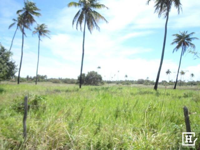 Terreno à venda - mosqueiro - Foto 8