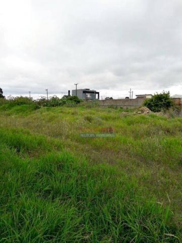 Terreno residencial à venda, afonso pena, são josé dos pinhais. - Foto 3