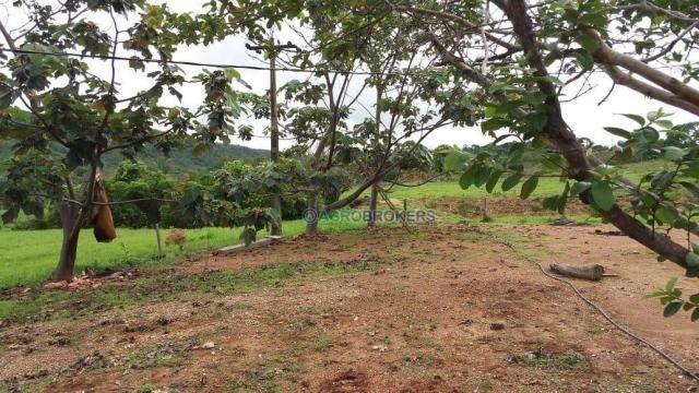 Sítio 19,5 ha em serra de são vicente - Foto 8