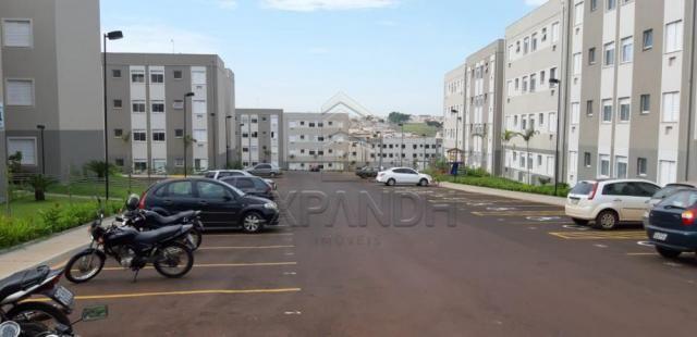 Apartamento para alugar com 2 dormitórios em Jardim veneto ii, Sertaozinho cod:L4376 - Foto 4