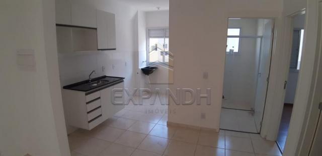 Apartamento para alugar com 2 dormitórios em Jardim veneto ii, Sertaozinho cod:L4376 - Foto 13