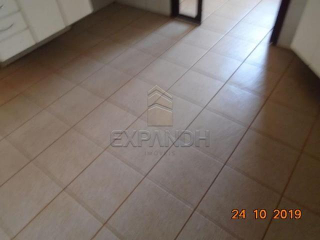 Apartamento para alugar com 2 dormitórios em Jardim sao jose, Sertaozinho cod:L1256 - Foto 19