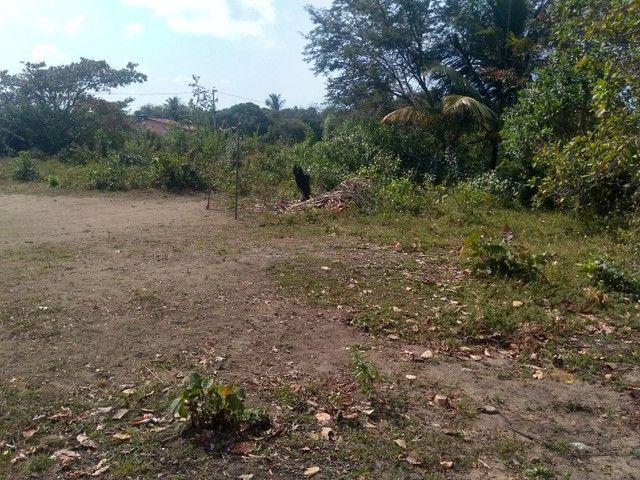 Vendo terreno em Itamaracá  - Foto 6