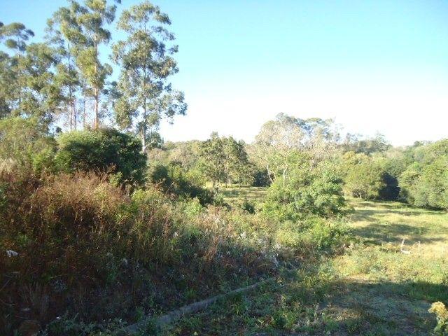 (T2488) Terreno no Bairro Haller, Santo Ângelo, RS - Foto 2