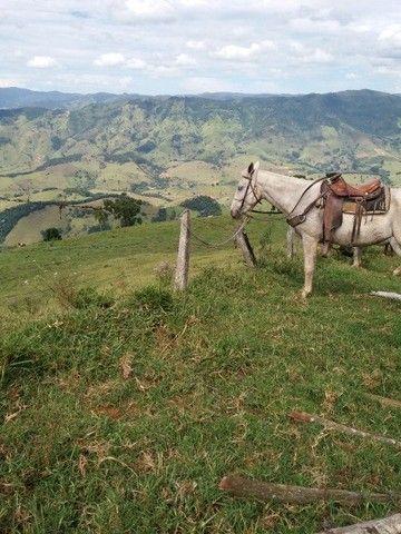 Sitio Maravilhoso e Rico em Água! Bairro Freires, Piranguçu/MG