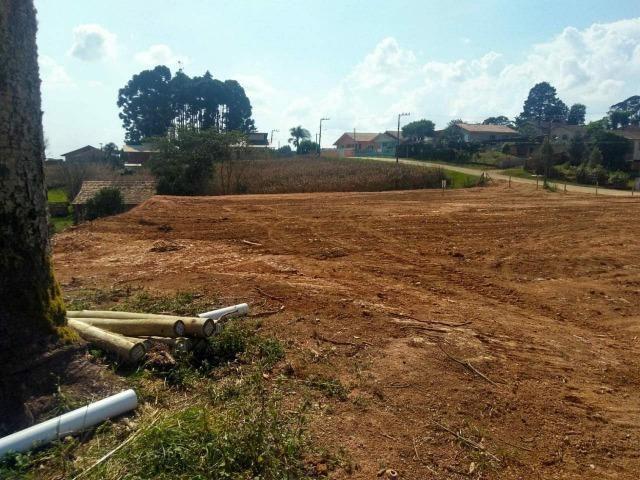 Terrenos a venda em são bento do sul-sc