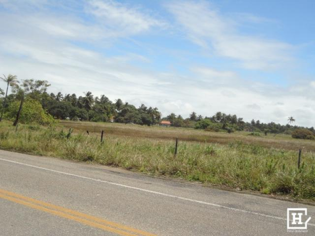 Terreno à venda - mosqueiro - Foto 3