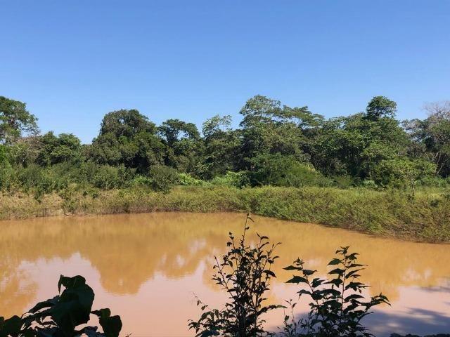 Chacara em Sto Antonio Leverger 110metros de Beira de Rio C/Tanque de Peixes Arvores Fruti - Foto 11