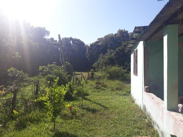 LCód: 21 Mini Sítio (Área Rural) - em Tamoios - Cabo Frio/RJ - Centro Hípico - Foto 5