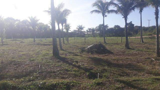 L - Terrenos localizados à 1km da Rodovia Amaral Peixoto!! - Foto 4