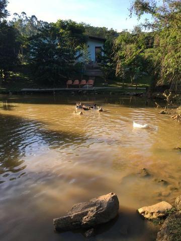 Sítio com casa mobiliada em Porto Belo- Sertão do Valongo - 2.369.00m² - Foto 4