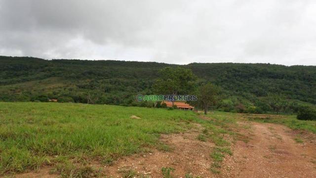 Sítio 19,5 ha em serra de são vicente - Foto 10