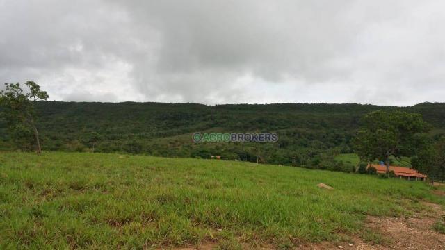 Sítio 19,5 ha em serra de são vicente - Foto 9