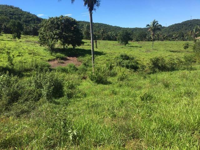 Fazenda a 4 km da BR 364 antes da Serra de São Vicente Prox do posto chapadão - Foto 11