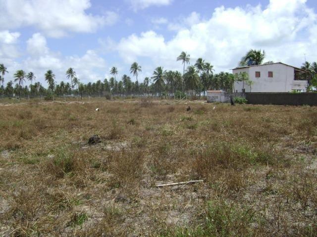 Terreno em Aver-o-mar (Barra de Sirinhaém) - Foto 3