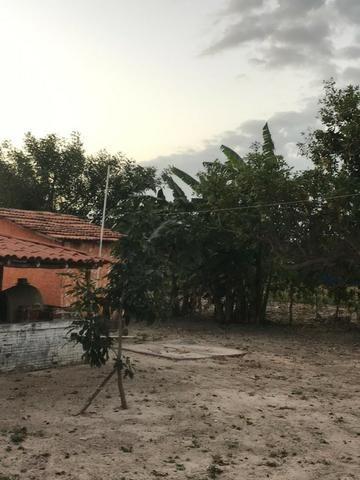 Sítio de 60Hectares a 13Km da Cidade do Buriti dos Lopes. (140mil) - Foto 12