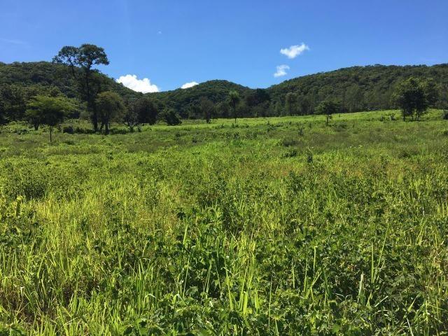 Fazenda a 4 km da BR 364 antes da Serra de São Vicente Prox do posto chapadão - Foto 7