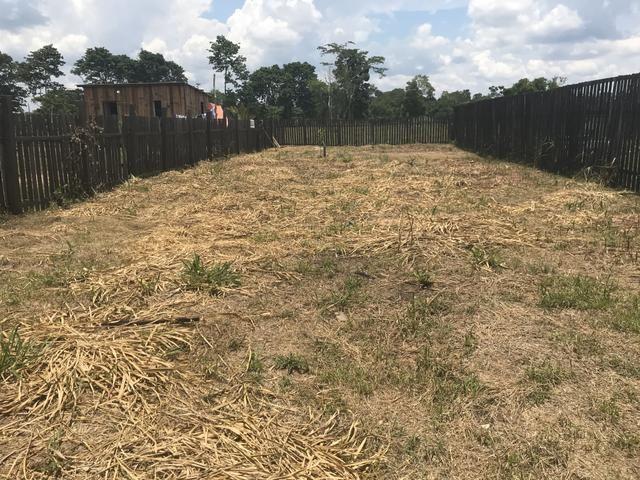 Vendo Terreno ramal da Garapeira - Foto 2