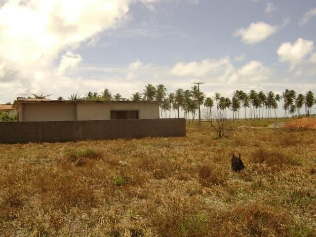 Terreno em Aver-o-mar (Barra de Sirinhaém) - Foto 2