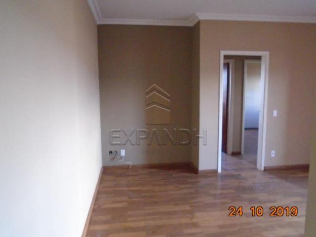 Apartamento para alugar com 2 dormitórios em Jardim sao jose, Sertaozinho cod:L1256 - Foto 12