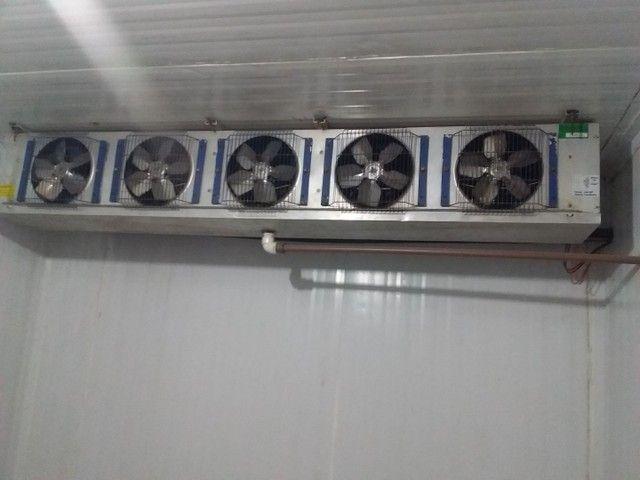 Câmara fria para distribuidora - Foto 4