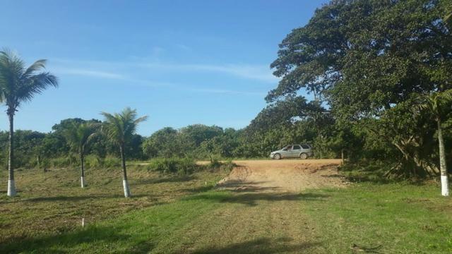 L - Terrenos localizados à 1km da Rodovia Amaral Peixoto!! - Foto 2