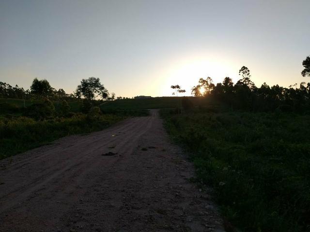 Lindo terreno no sítio - Foto 2