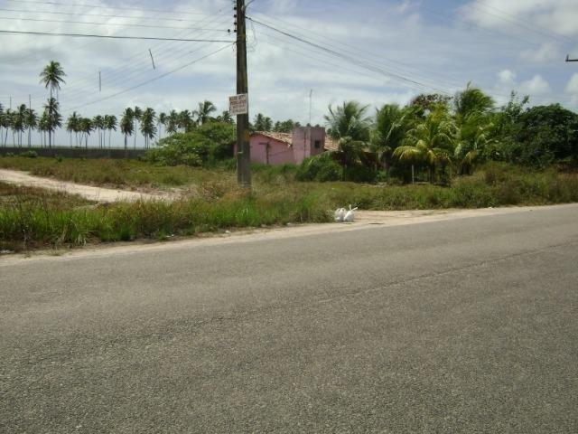 Terreno em Aver-o-mar (Barra de Sirinhaém) - Foto 5