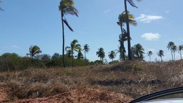 Terreno em Paripueira - Condomínio Colinas do sonho verde - Foto 10