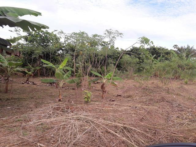 Vendo terreno na Vila do V