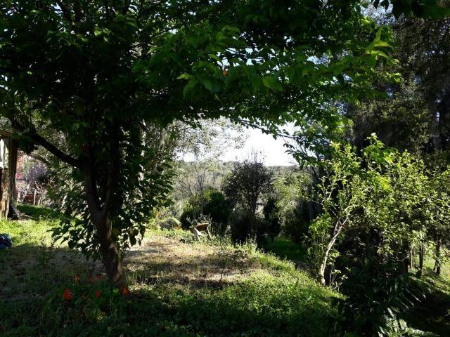 Chácara em Contenda -São José dos `Pinhais - Foto 7